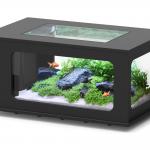 Aquatable 100x63cm Black 324L