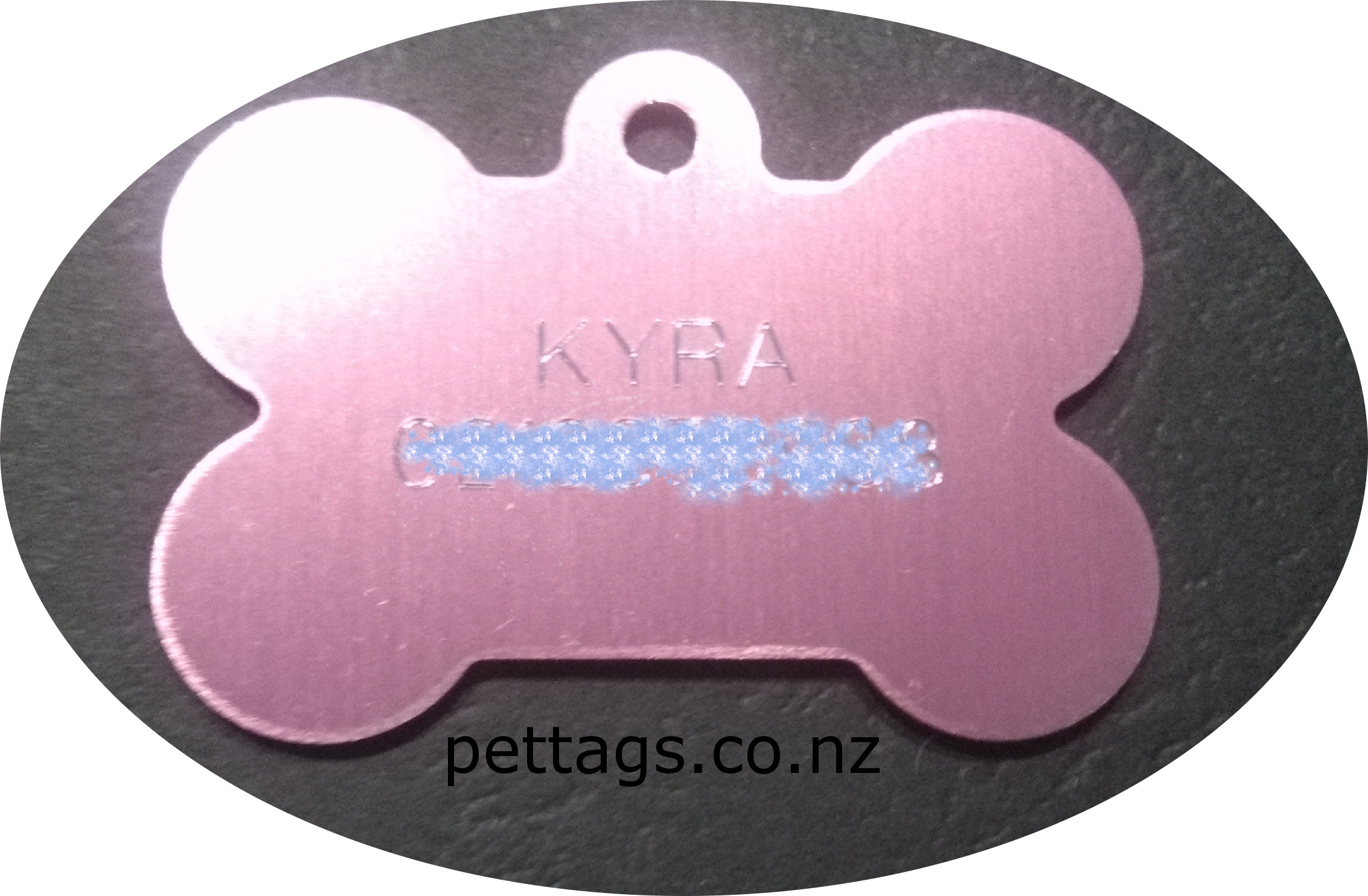 engraved pet tag in bone shape
