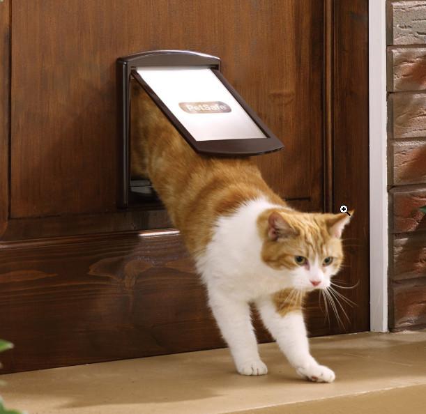 Staywell 2 Way Sml Pet Door - Brown
