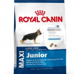 ROYAL CANIN MAXI DOG JUNIOR 15KG