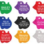 mouse pet tag