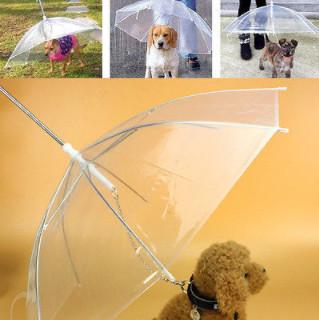 Pet Umbrella with Built-in Chain Leash