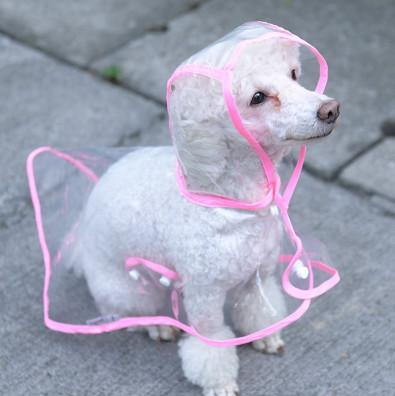 raincoatTransparent
